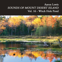 Aaron Lewis - Sounds of Mount Desert Island, Vol. 16: Witch Hole Pond