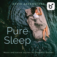 David Arkenstone - Pure Sleep: Music And Nature Sounds For Peaceful Dreams