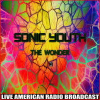 Sonic Youth - The Wonder (Live)