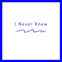 Marcus H Mitchell - I Never Knew
