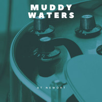 Muddy Waters - At Newort