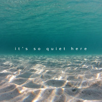 Nikonn - It's so Quiet Here