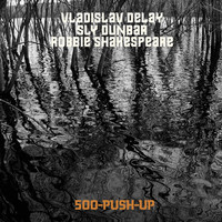 Vladislav Delay - 500 Push-Up