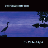 The Tragically Hip - In Violet Light (Explicit)