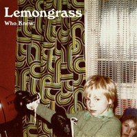 Lemongrass - Who Knew
