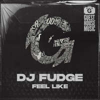DJ Fudge - Feel Like