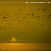 Various Artists - Lounge & Downtempo Essential Selection