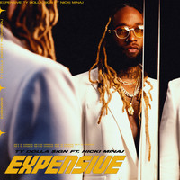 Ty Dolla $ign - Expensive (feat. Nicki Minaj) (Explicit)