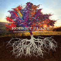 Robert Plant - Too Much Alike (with Patty Griffin)