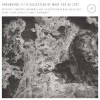 Arrowhead - A Collection of What You've Lost (Explicit)