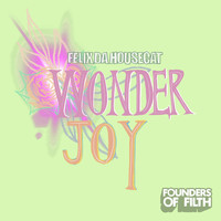 Felix Da Housecat - Wonderjoy