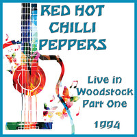 Red Hot Chili Peppers - Live At Woodstock Part One (Live)