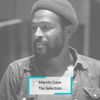 Marvin Gaye - Marvin Gaye - The Selection