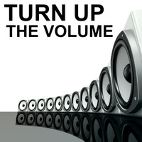 Various Artists - Turn up the Volume