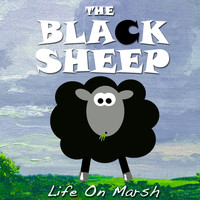 The Black Sheep - Life On Marsh