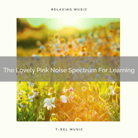 Fans & White Noise - The Lovely Pink Noise Spectrum For Learning