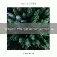 Ambient Nature White Noise - The Beautiful White Noise Spectrum For Perfect Nap