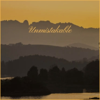 Various Artists - Unmistakable