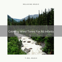 White Noise Spa - Calming Wind Tones For All Infants