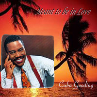 Cuba Gooding - Meant to Be in Love