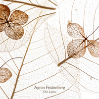 Agnes Fredenberg - Dim Lights