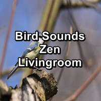 Sleep - Bird Sounds Zen Livingroom