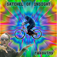 Rakoviny / - Stachel of Insight