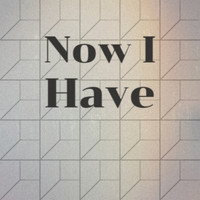 Various Artist - Now I Have