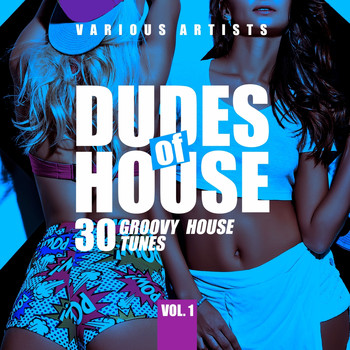 Various Artists - Dudes of House (30 Groovy House Tunes), Vol. 1