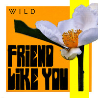 Wild - Friend Like You