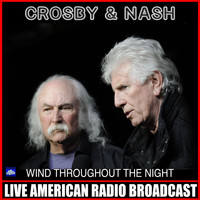 Crosby & Nash - Wind Throughout The Night (Live)