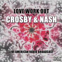Crosby & Nash - Love Work Out (Live)