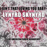 Lynyrd Skynyrd - Ain't That Loving You Baby (Live)