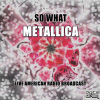 Metallica - So What (Live)