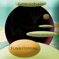 FunkshyBeats / - Funkstepping