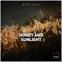 Boss Axis - Honey and the Sunlight