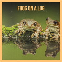 Various Artist - Frog On A Log