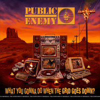 Public Enemy - What You Gonna Do When The Grid Goes Down? (Explicit)