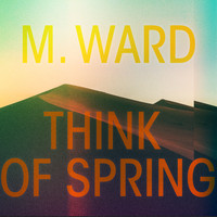 M. Ward - You've Changed