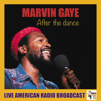Marvin Gaye - After the Dance (Live)