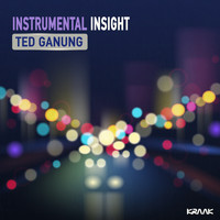 Ted Ganung - Instrumental Insight