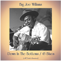 Big Joe Williams - Down In The Bottoms / 45 Blues (All Tracks Remastered)