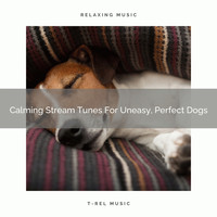 Pets Relax - Calming Stream Tunes For Uneasy, Perfect Dogs