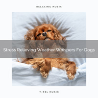Dog Total Relax - Stress Relieving Weather Whispers For Dogs