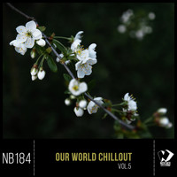 Various Artists - Our World Chillout, Vol. 5