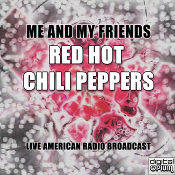 Red Hot Chili Peppers - Me and My Friends (Live)