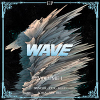 Various Artists / - Wave, Vol. 1