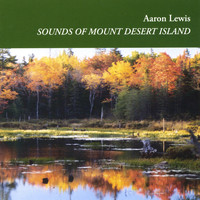 Aaron Lewis - Sounds of Mount Desert Island