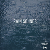 The Deep Sleep Scientists - Rain Sounds
