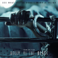 Mary J. Blige - See What You've Done (From The Film Belly Of The Beast)